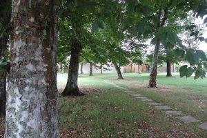 PVT - projet de Gujan Mestras Les Parqueurs 3