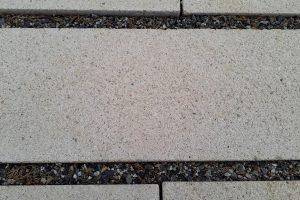 PVT - projet du cimetière de Gagnac sur Garonne - Hêtre paysage - 3