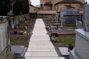 PVT - projet du cimetière de Gagnac sur Garonne - Hêtre paysage
